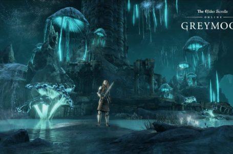Elder Scrolls Online 5 Ways You Can Get Ready for Greymoor