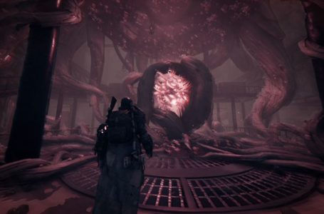 Remnant From The Ashes Final DLC 'Subject 2923' Will Be Released This August