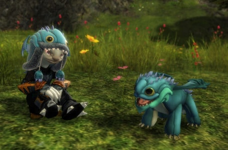 GuildWars 2 Baby Aurene Colorful Bundle Added For Charity Fundraising Drives