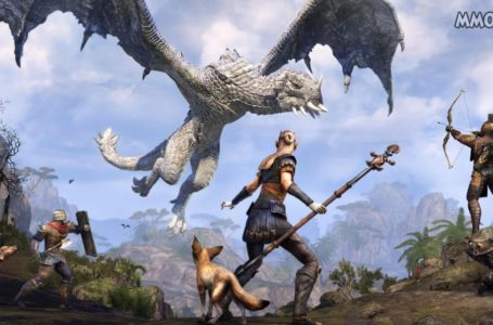 Elder Scrolls Online Inventory Bug and NPC Sell Issues Are Investigated by Zenimax
